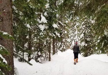 snowy hiking in horseshoe prairie trail