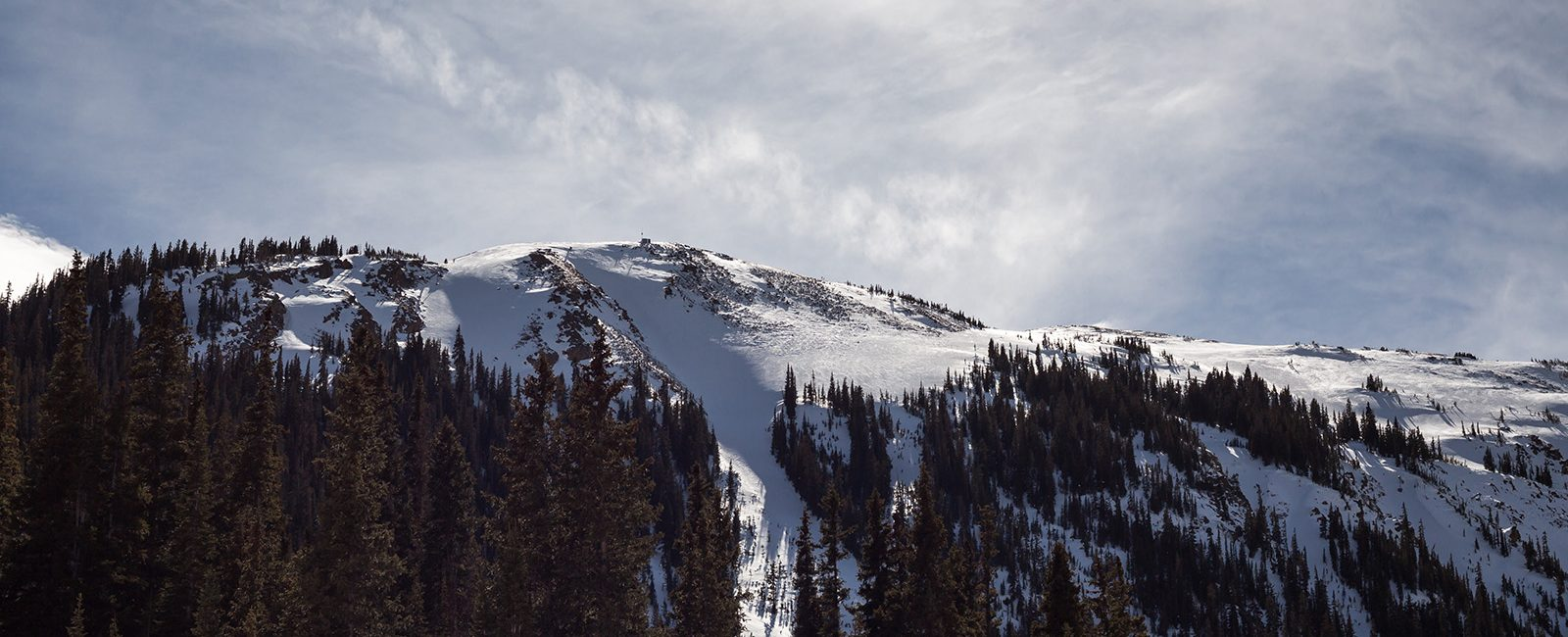 from Cohen gay skiing colorado