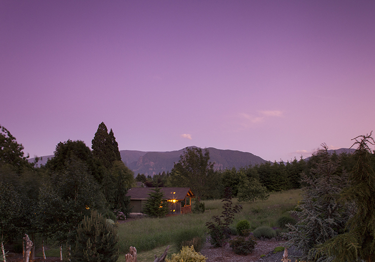 5-Carson_Ridge_Luxury_Cabins_1_-_Nature