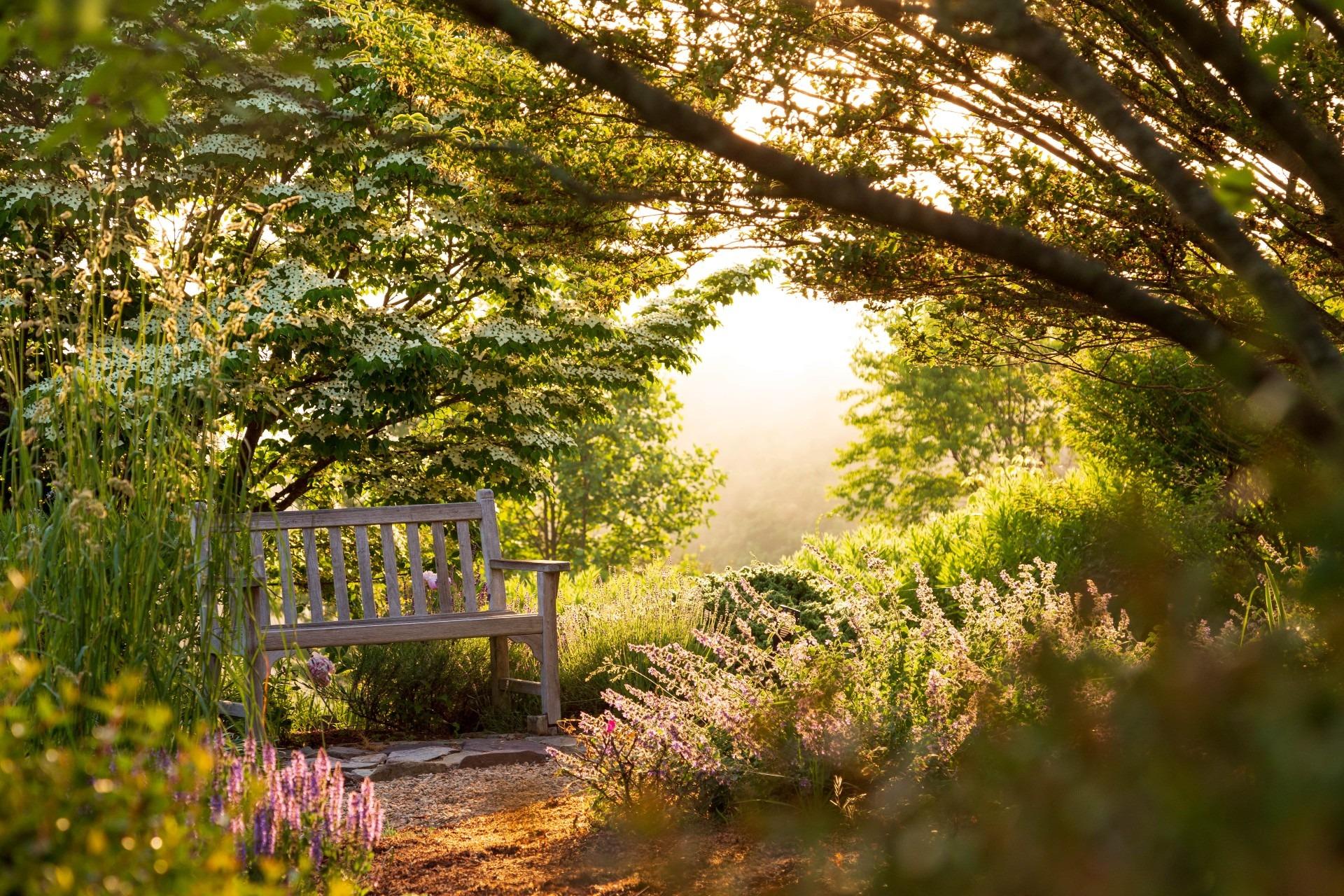 Brierley-Hill-T-Gardens-10-min (1)
