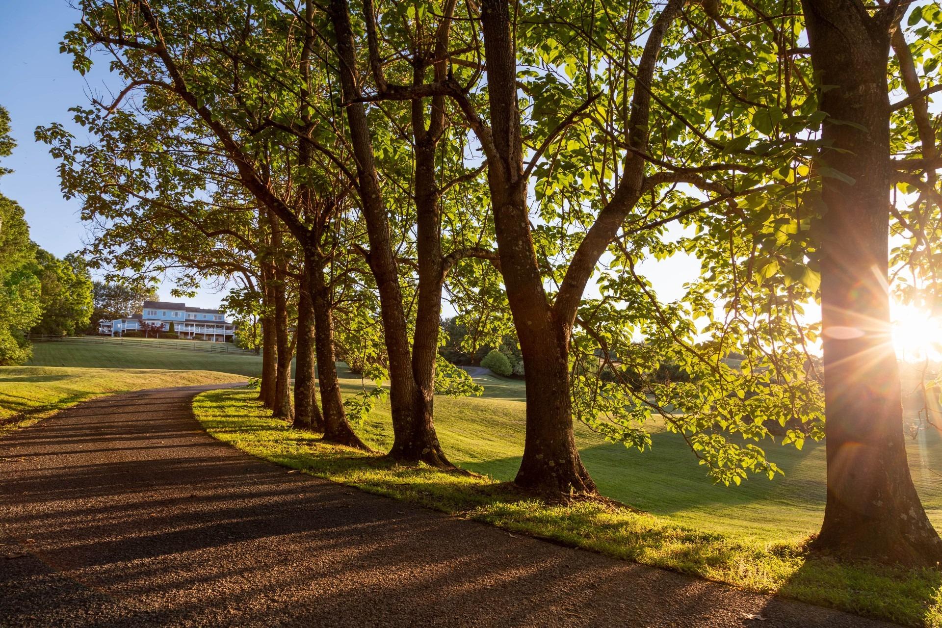 Brierley-Hill-T-Gardens-Facade-1-min (1)