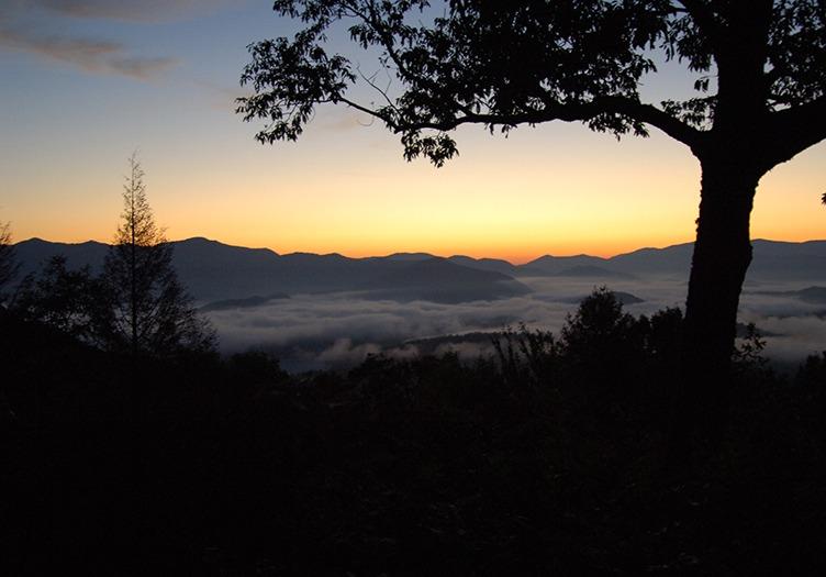 Snowbird_Mountain_Lodge_3_-_Nature