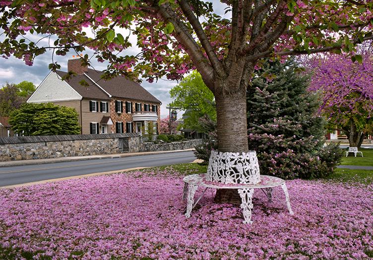 historic-smithtown-spring
