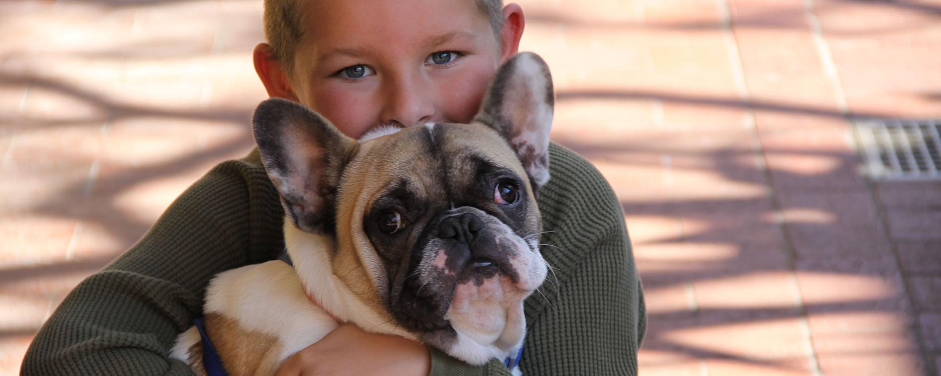 mccaffrey-house-pet-friendly-lodging