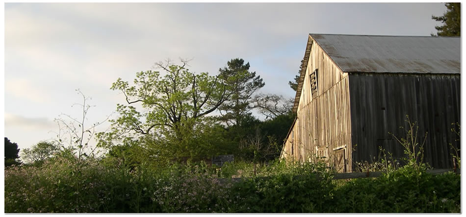 the-gables-barn