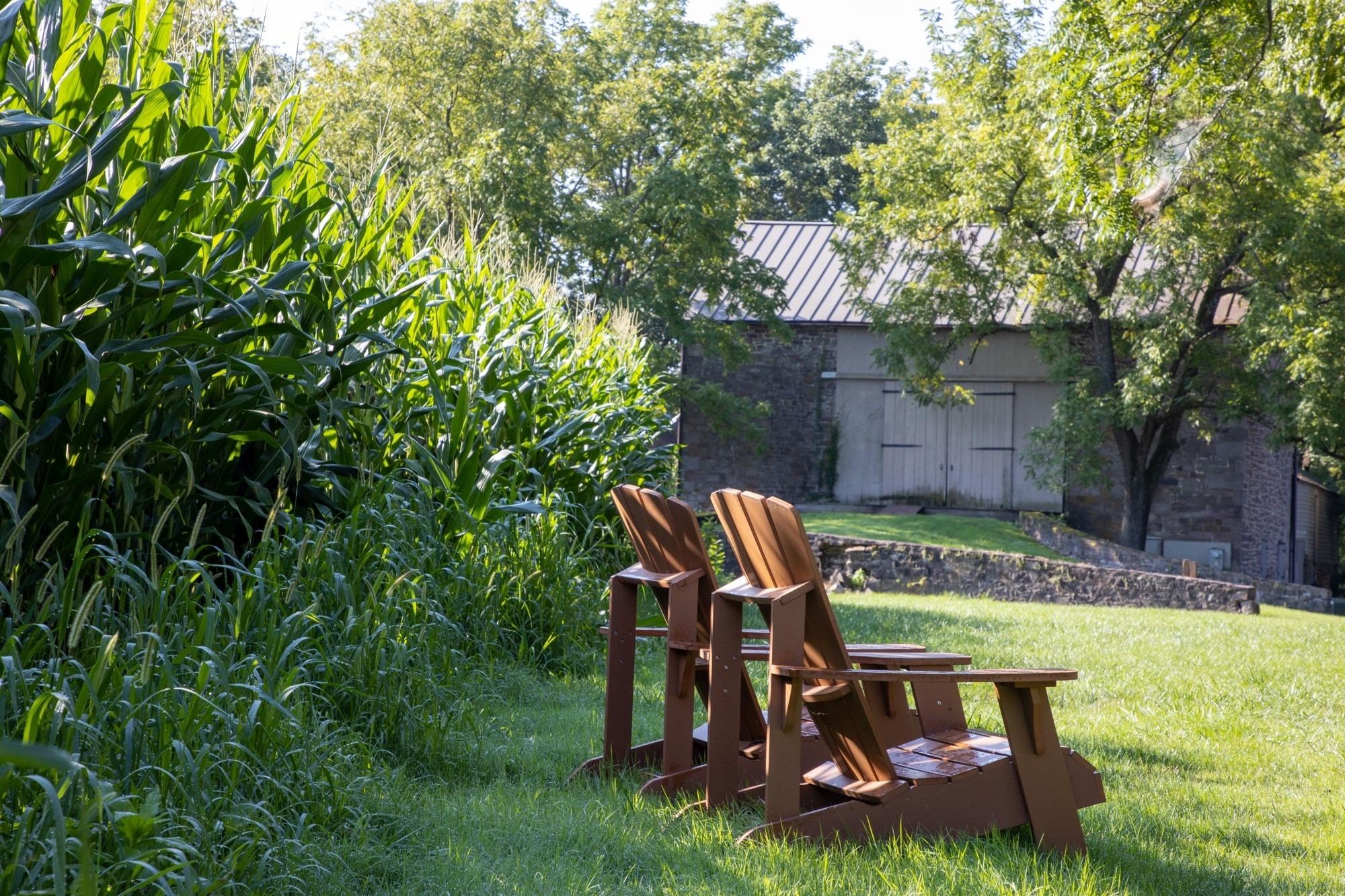 woolverton-chairs
