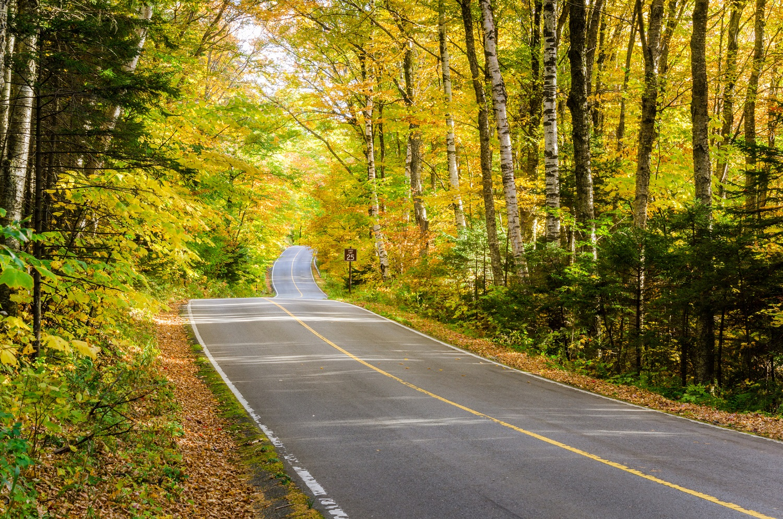 Mountain road in the Berkshires near Lenox MA