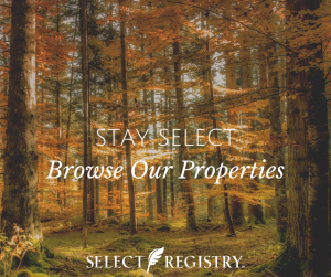 Fall trees with orange leaves. text reads stay select browse our properties