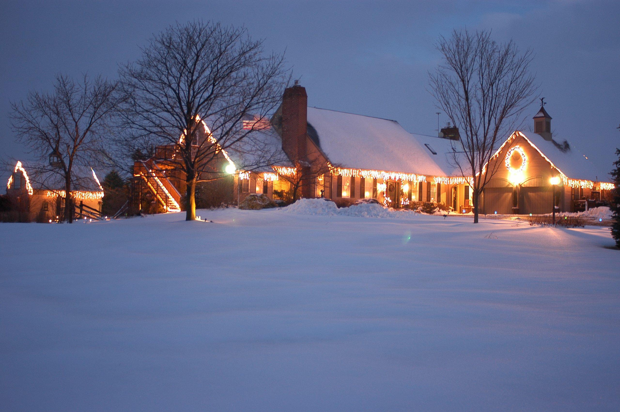Snow.Winter 2009 007 (2).jpg