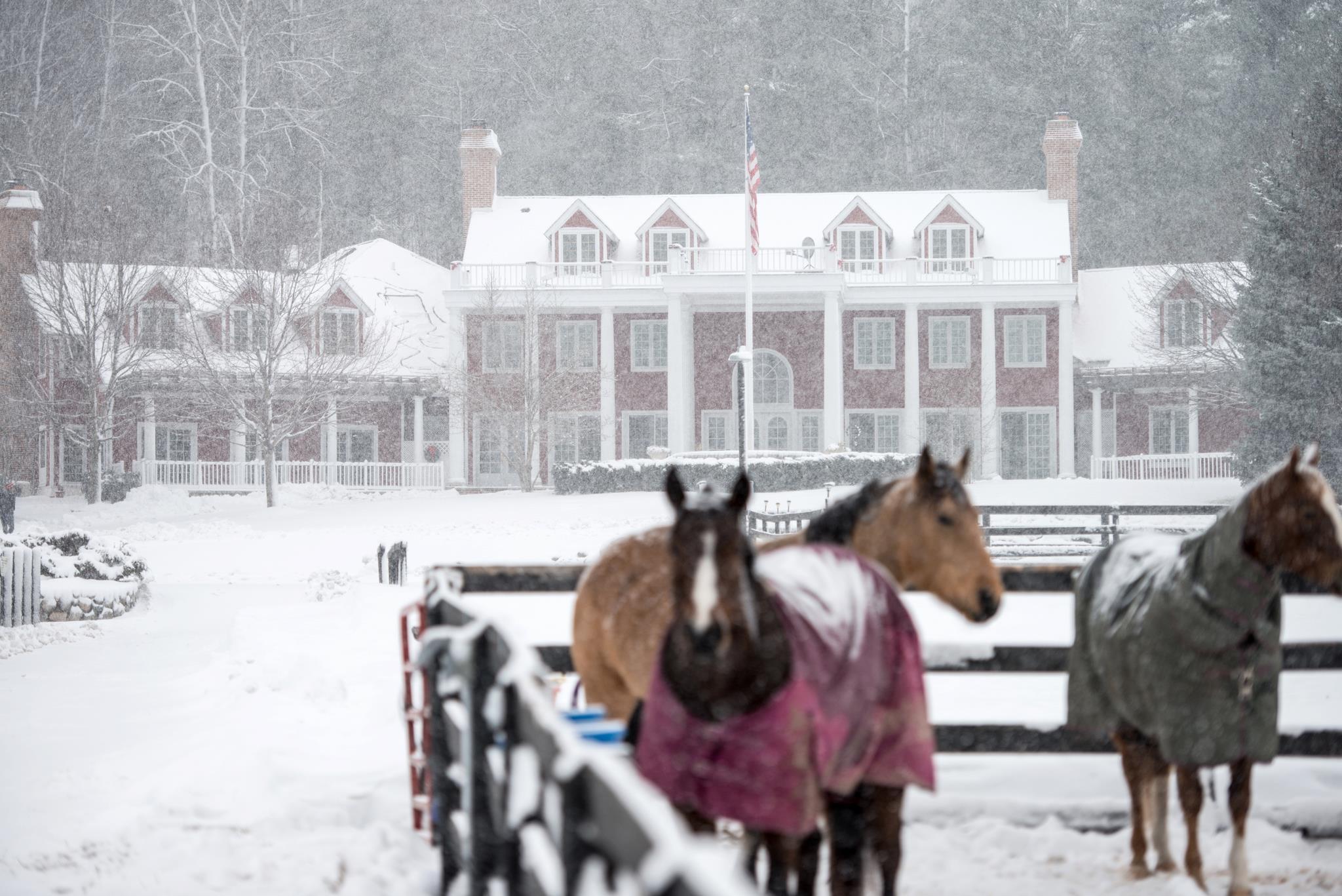 Inn and horses winter.jpg