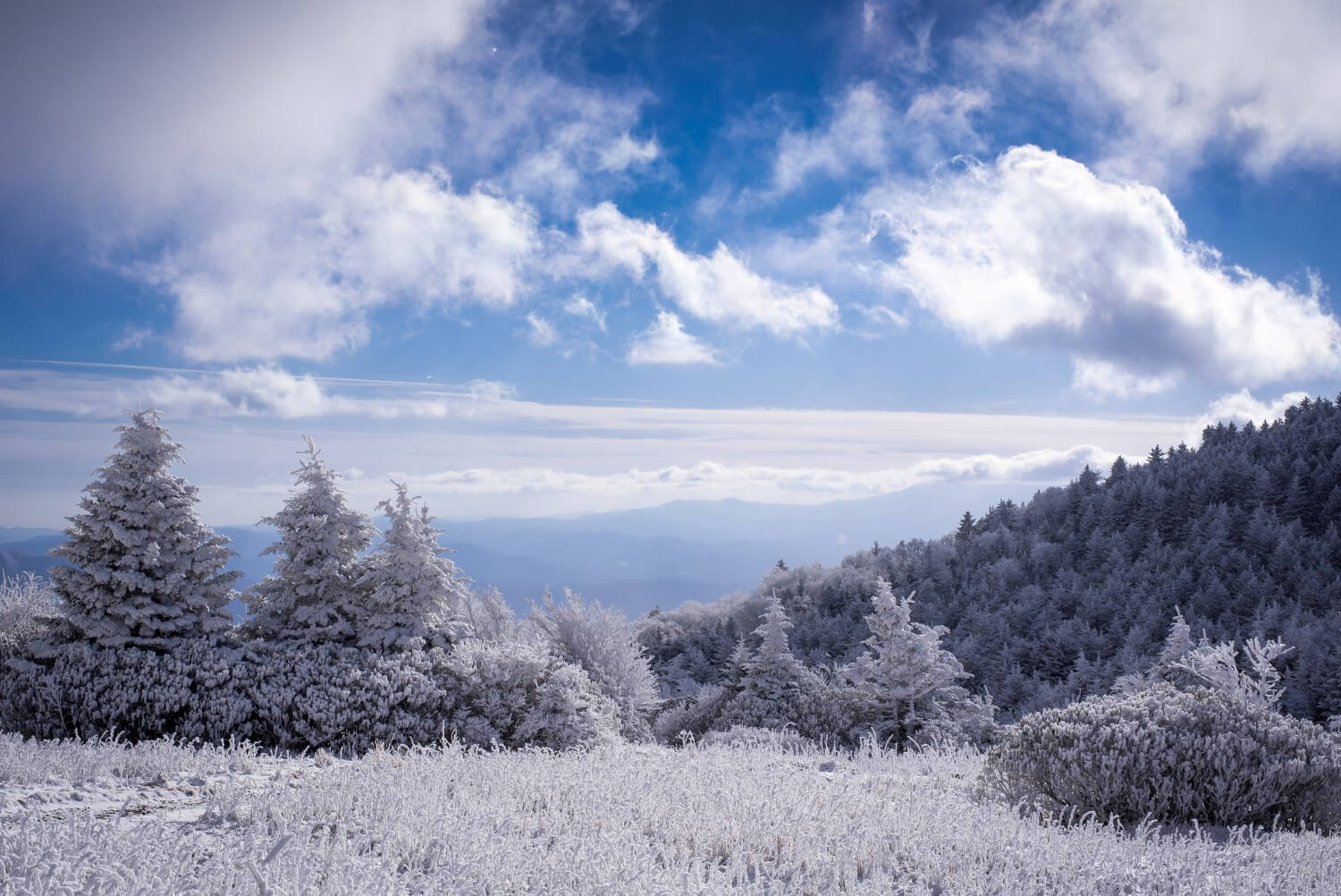 blue ridge mountains in the winter time