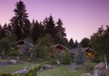 carson ridge cabins at dusk with evergreen trees