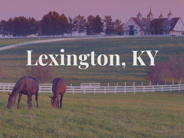 horses in field in lexington