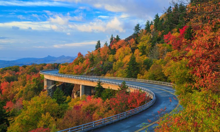 Linn Cove Viaduct Blue Ridge Parkway Fall (1)