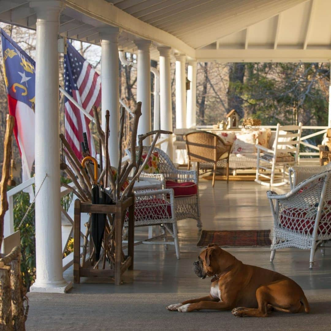 A patio in the mountains with a sleepy dog relaxing at The Orchard Inn.