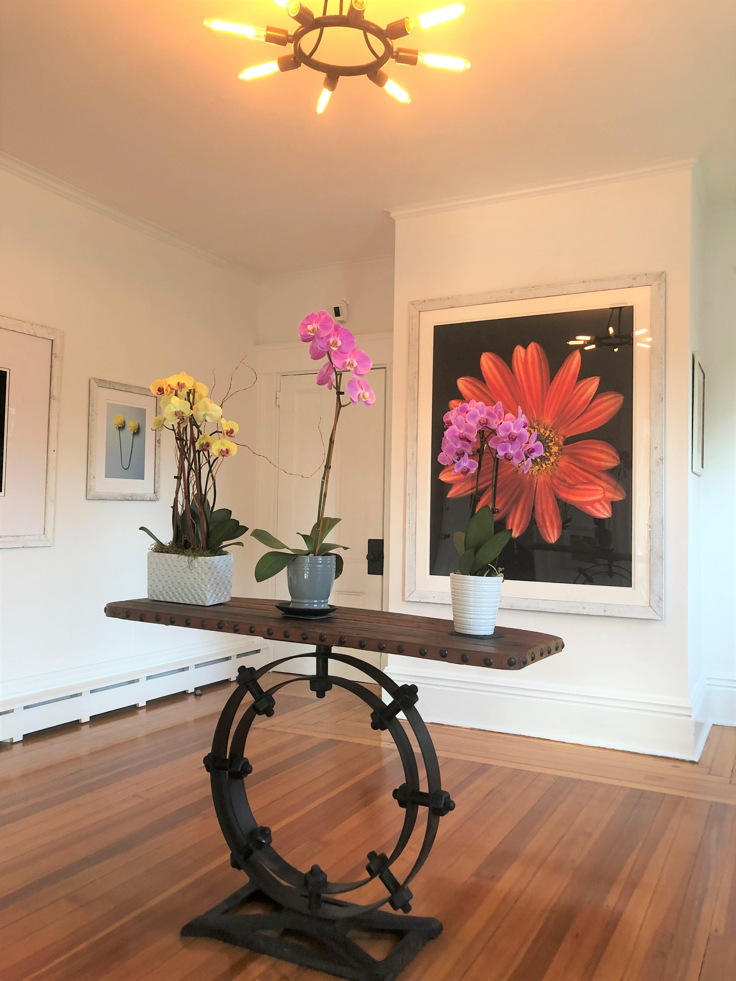 Sea Street Inn - Gallery 2 - Xenia D'Ambrosi