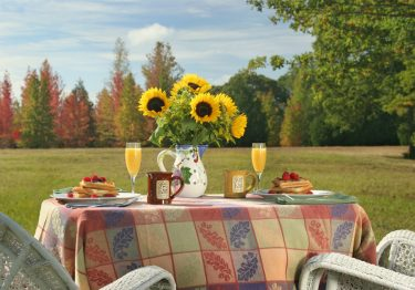 fall-farm-country-inn-table-with-sunflowers
