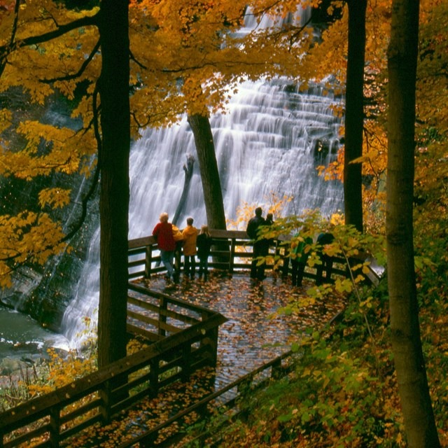 waterfall surrounded by trees with autumn leaves and people in foreground