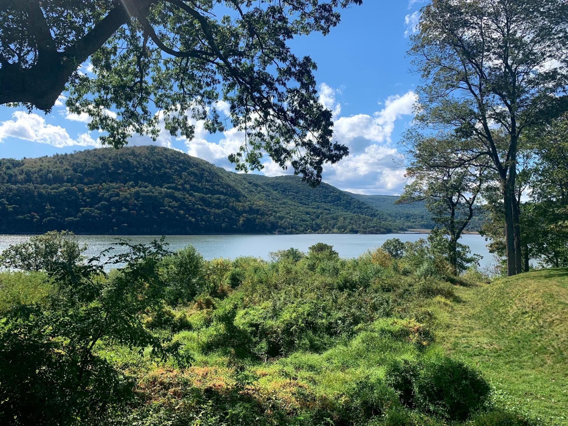 Monteverde-view