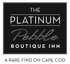 Platinum Logo small