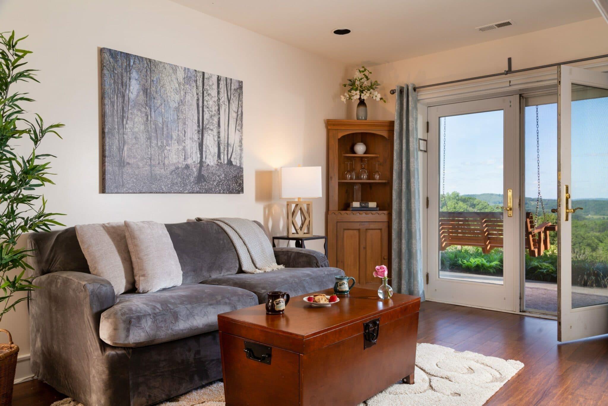 Shenandoah Suite Living Room