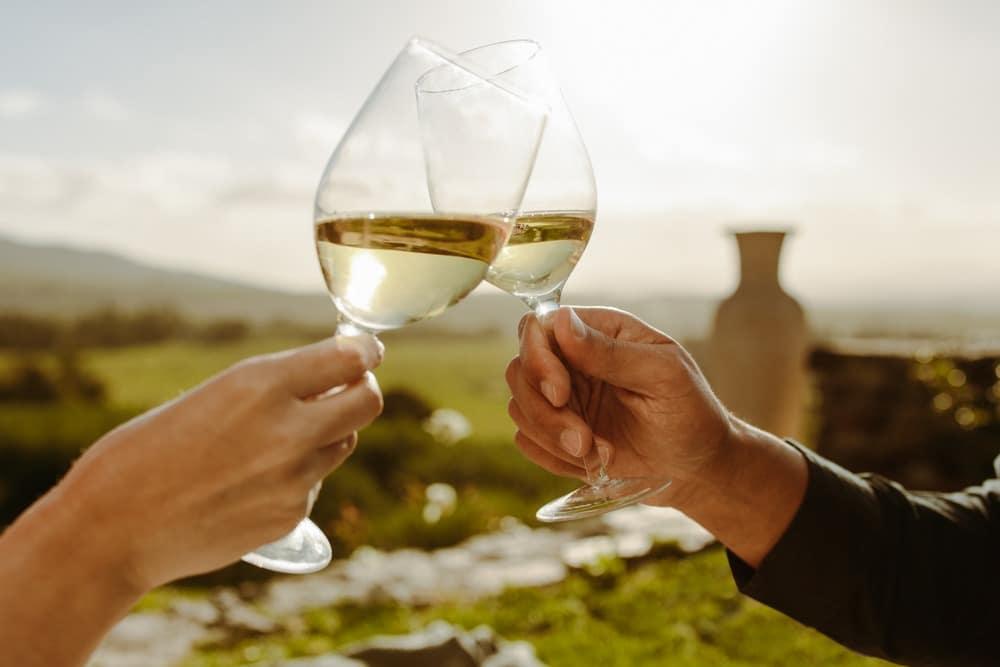 Enjoy some Enjoy Wine Tasting at the best Northern Georgia Wineries This Summer