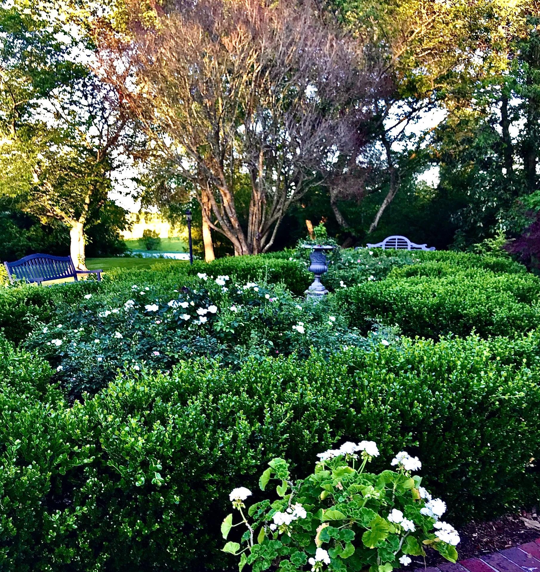 Cottongin-formal garden - Cheryl Orr (1)